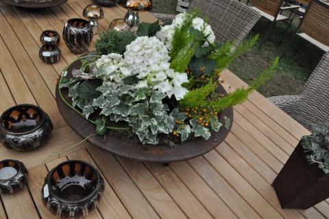 pflanzen schale kranz ampel. Black Bedroom Furniture Sets. Home Design Ideas