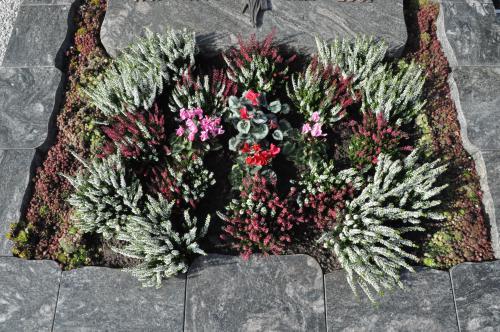 Grabbepflanzung Herbst 002  wwwblumenweilrodde